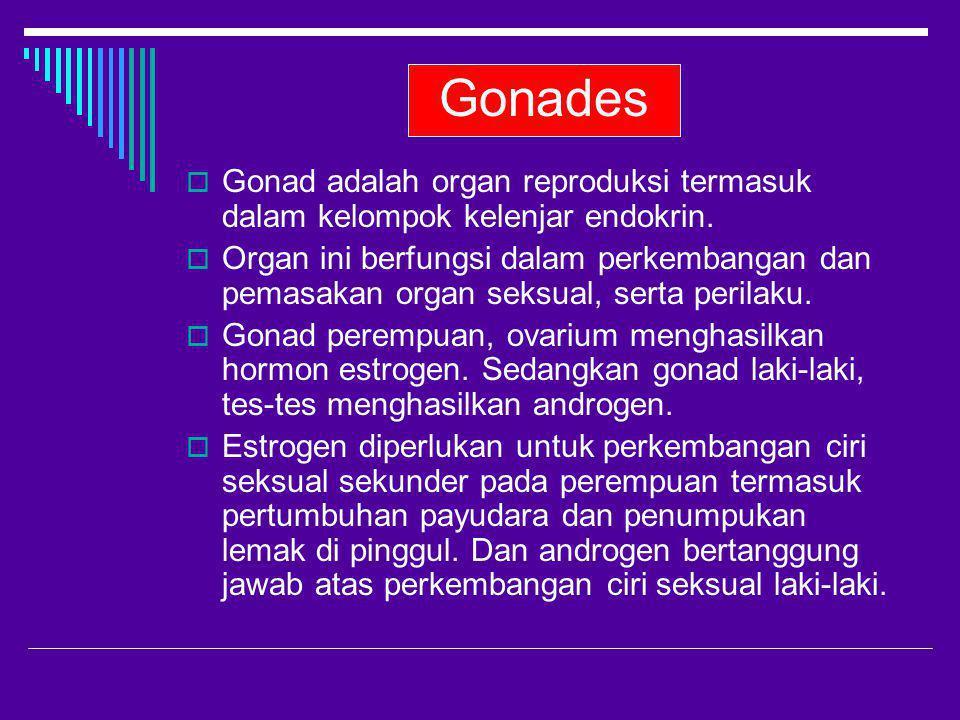 Gonades Gonad adalah organ reproduksi termasuk dalam kelompok kelenjar endokrin.