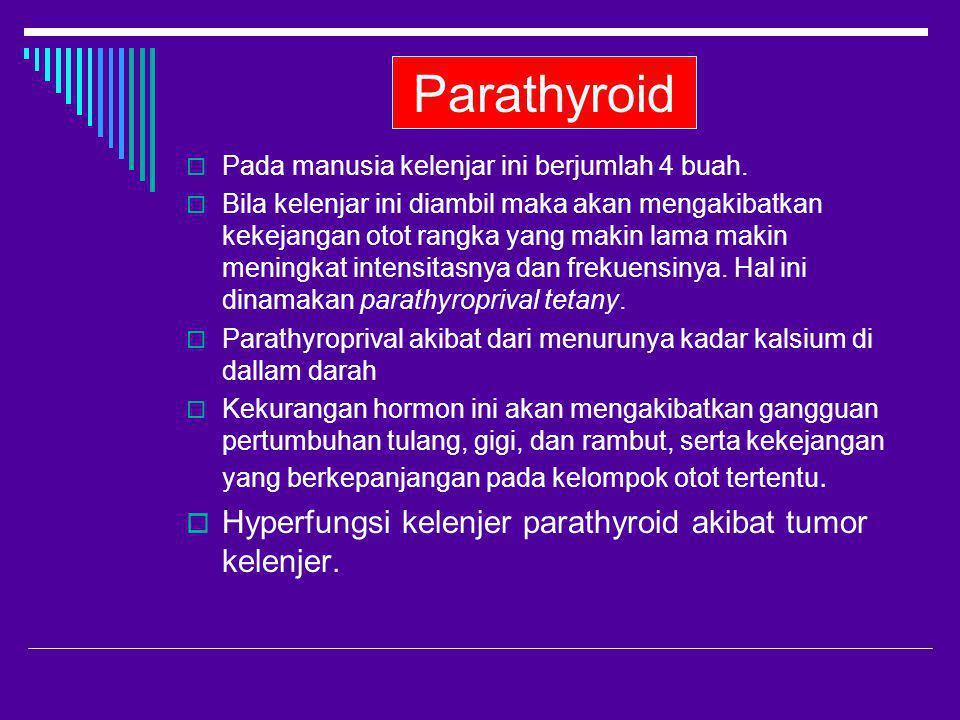 Parathyroid Hyperfungsi kelenjer parathyroid akibat tumor kelenjer.