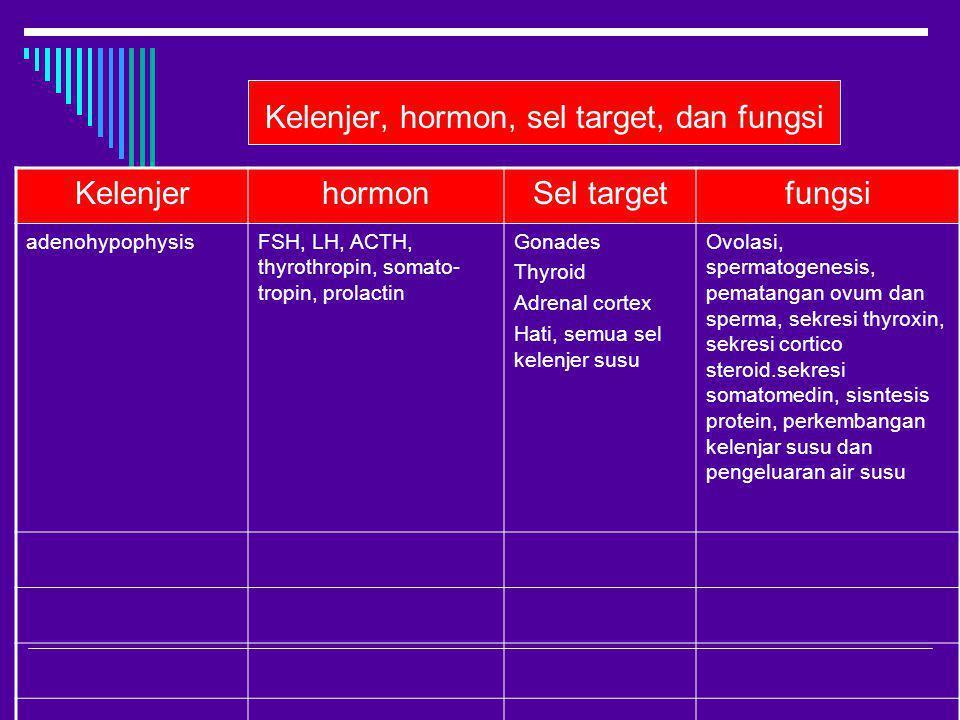 Kelenjer, hormon, sel target, dan fungsi