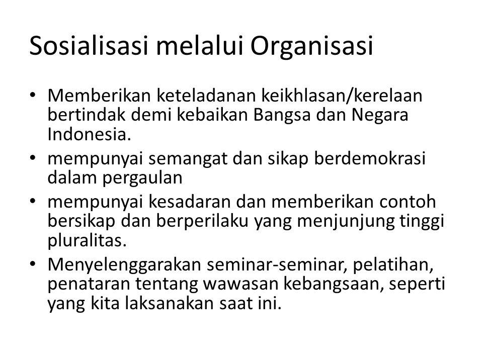 Sosialisasi melalui Organisasi
