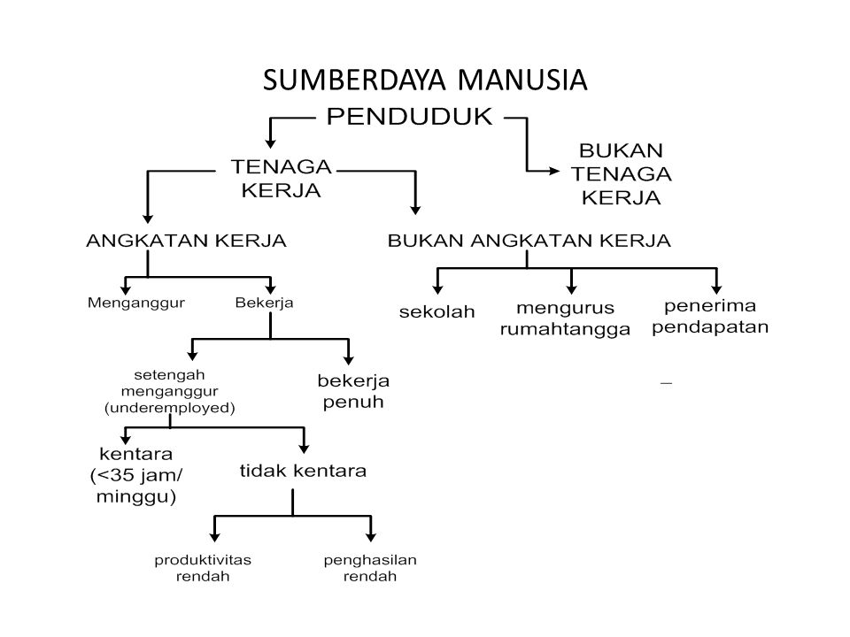 SUMBERDAYA MANUSIA