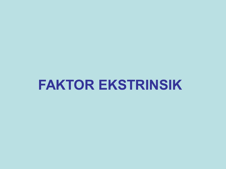 FAKTOR EKSTRINSIK