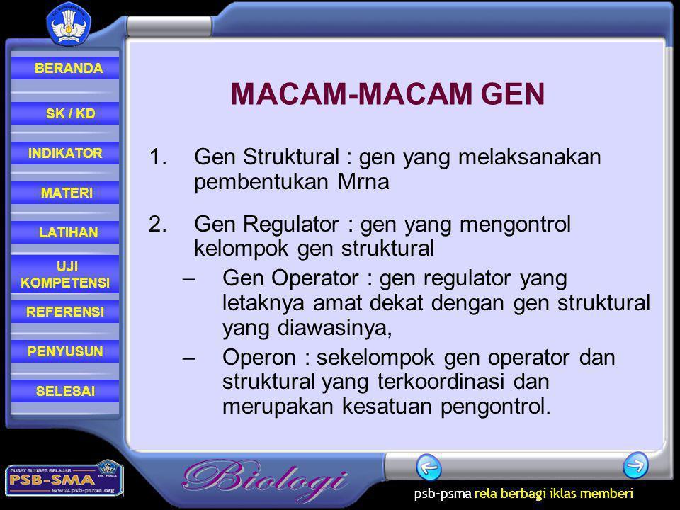 MACAM-MACAM GEN Gen Struktural : gen yang melaksanakan pembentukan Mrna. Gen Regulator : gen yang mengontrol kelompok gen struktural.