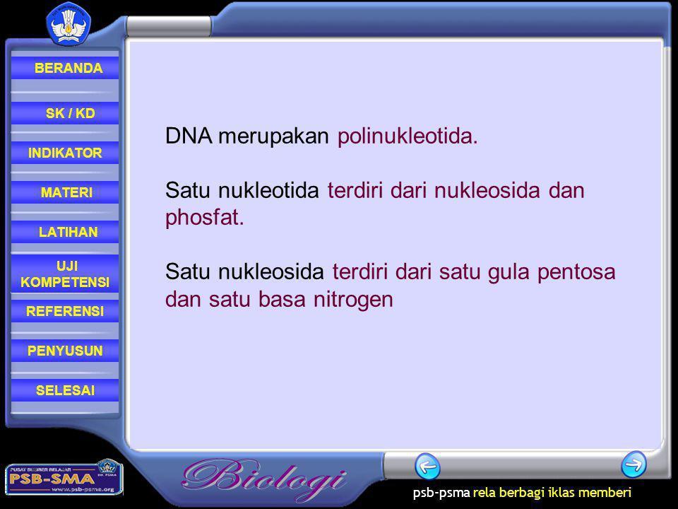 DNA merupakan polinukleotida.