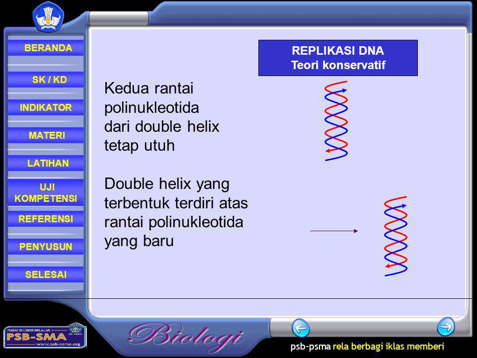 Kedua rantai polinukleotida dari double helix tetap utuh