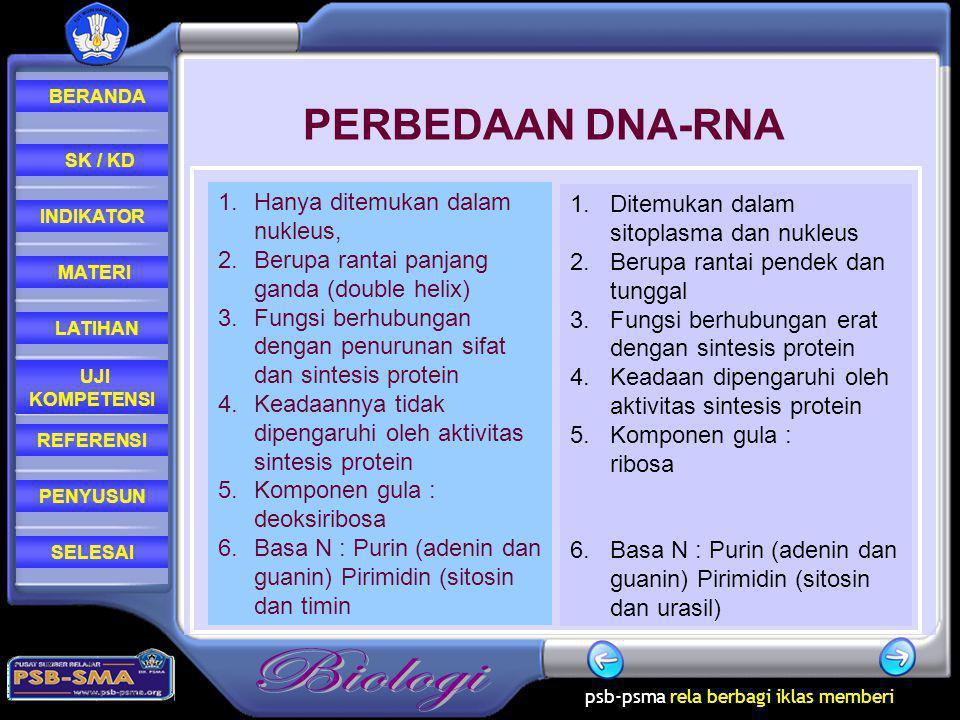 PERBEDAAN DNA-RNA Hanya ditemukan dalam nukleus,