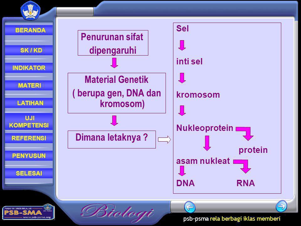 ( berupa gen, DNA dan kromosom)