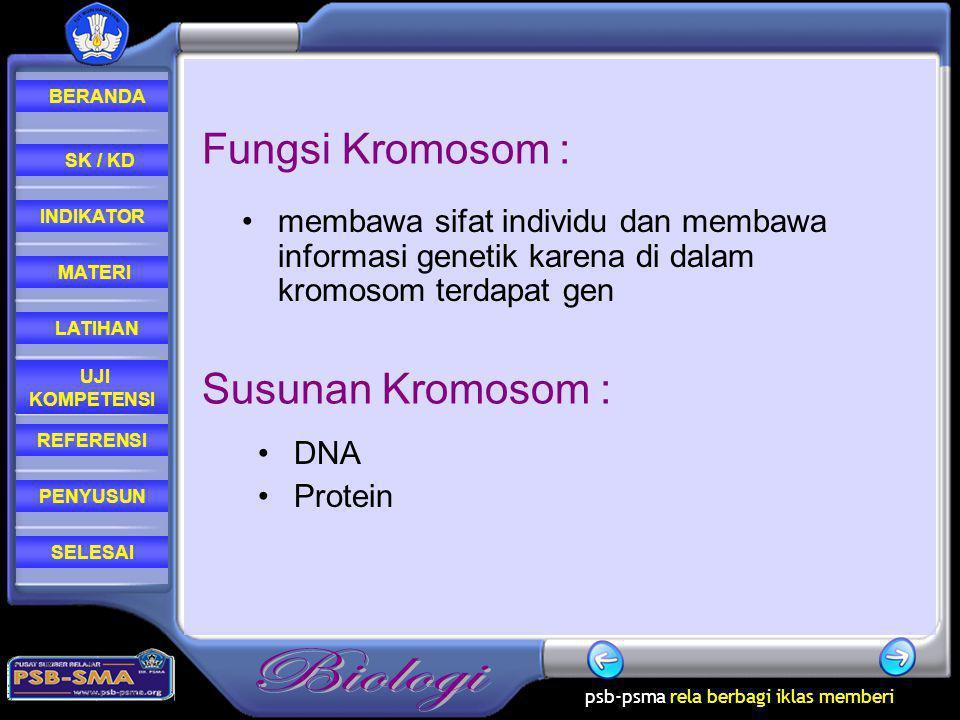 Fungsi Kromosom : Susunan Kromosom :
