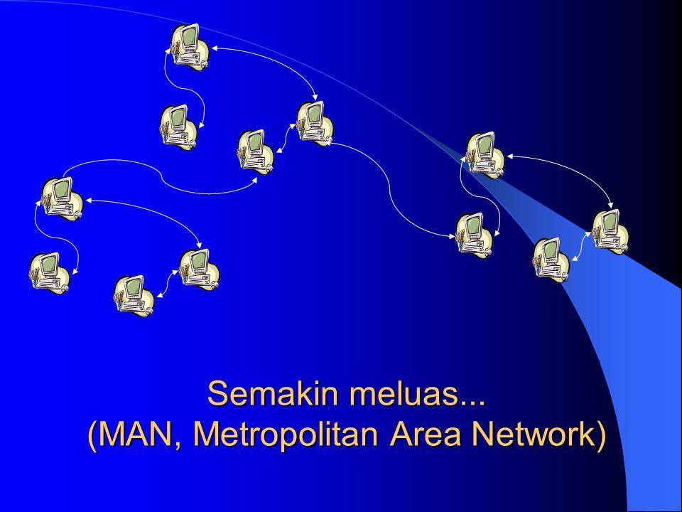 Semakin meluas... (MAN, Metropolitan Area Network)