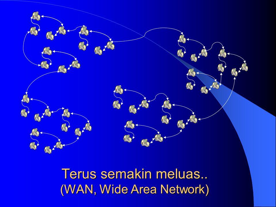Terus semakin meluas.. (WAN, Wide Area Network)