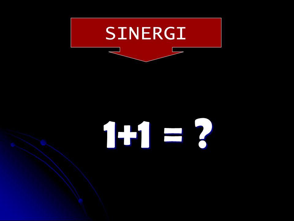 SINERGI 1+1 =