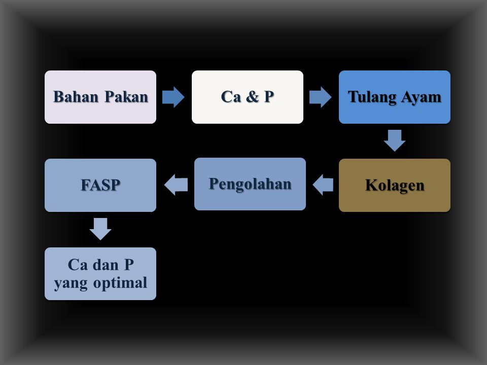 Bahan Pakan Ca & P Tulang Ayam Kolagen Pengolahan FASP Ca dan P yang optimal