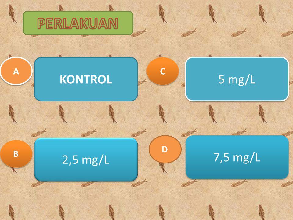 PERLAKUAN A KONTROL C 5 mg/L D 7,5 mg/L 2,5 mg/L B