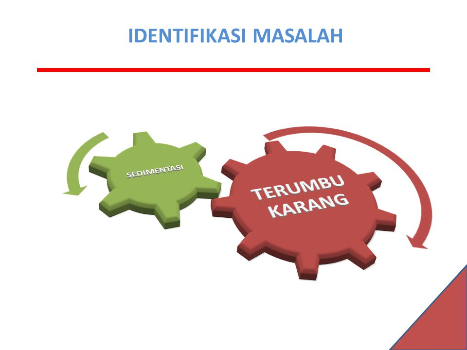 TERUMBU KARANG SEDIMENTASI IDENTIFIKASI MASALAH IDENTIFIKASI MASALAH