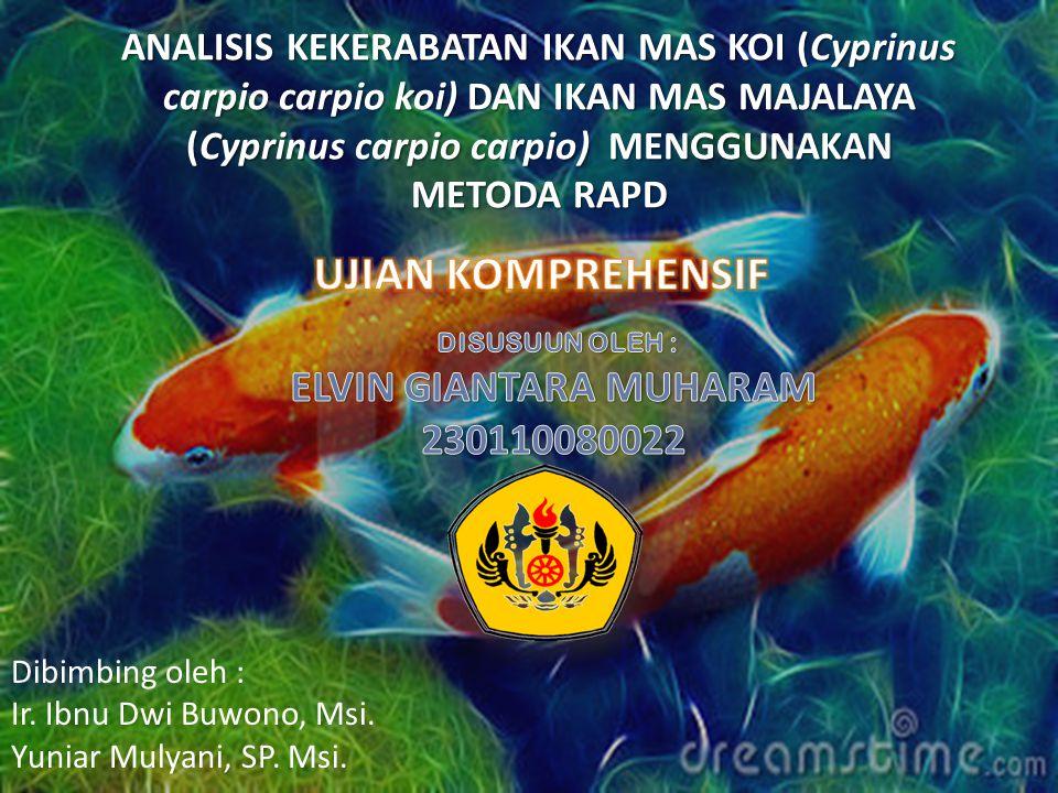 ELVIN GIANTARA MUHARAM 230110080022