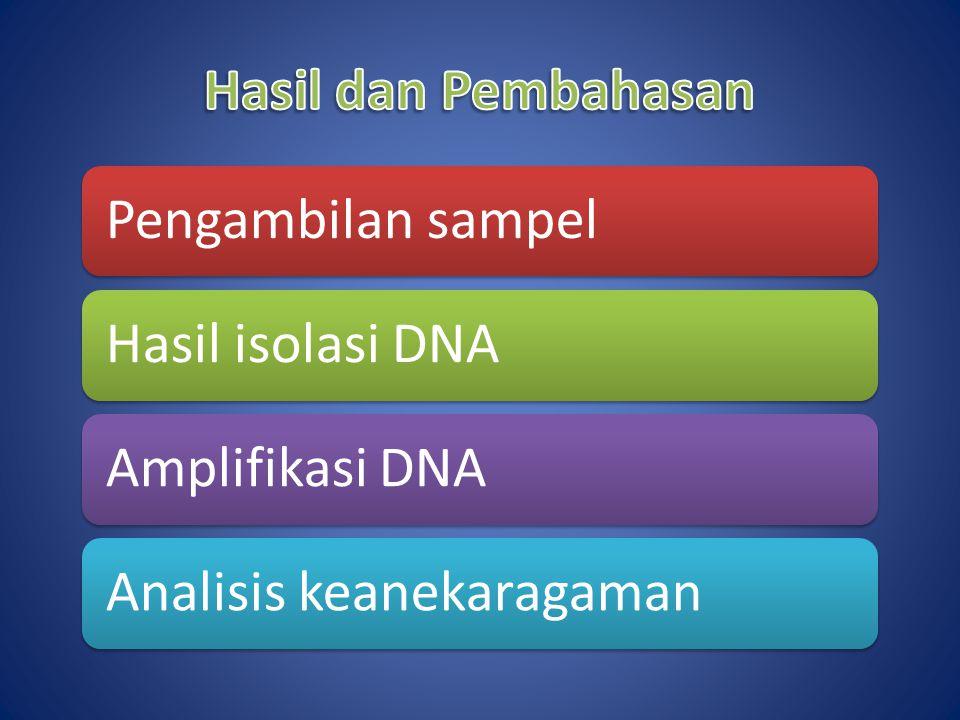 Hasil dan Pembahasan Pengambilan sampel Hasil isolasi DNA