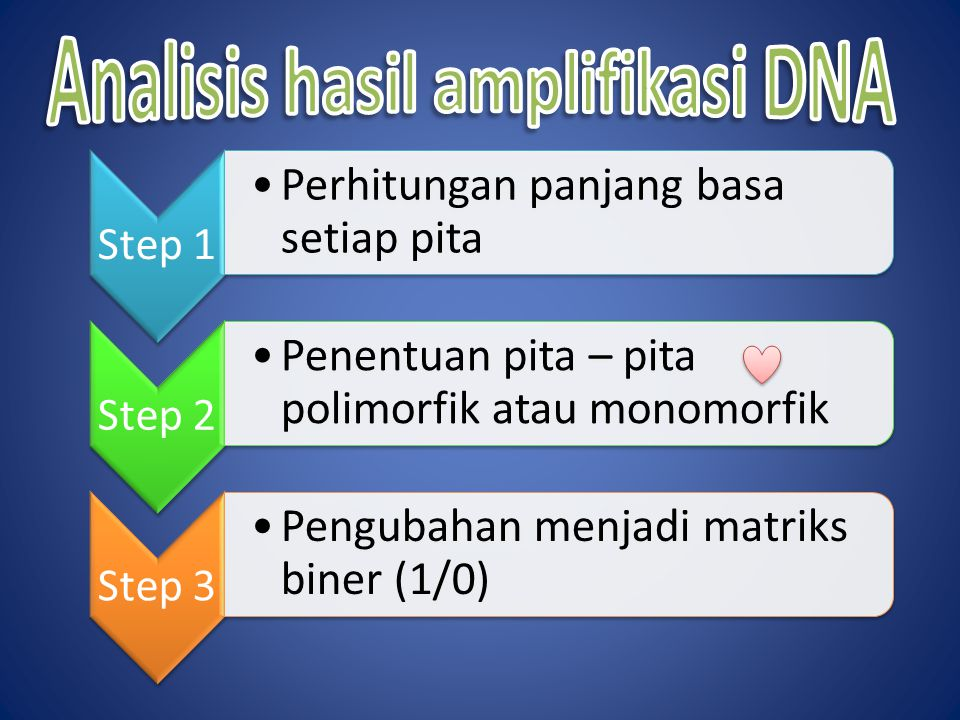 Analisis hasil amplifikasi DNA