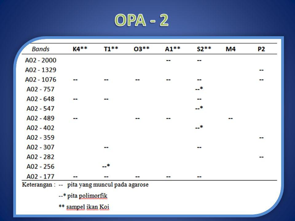 OPA - 2