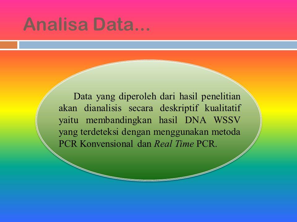 Analisa Data...