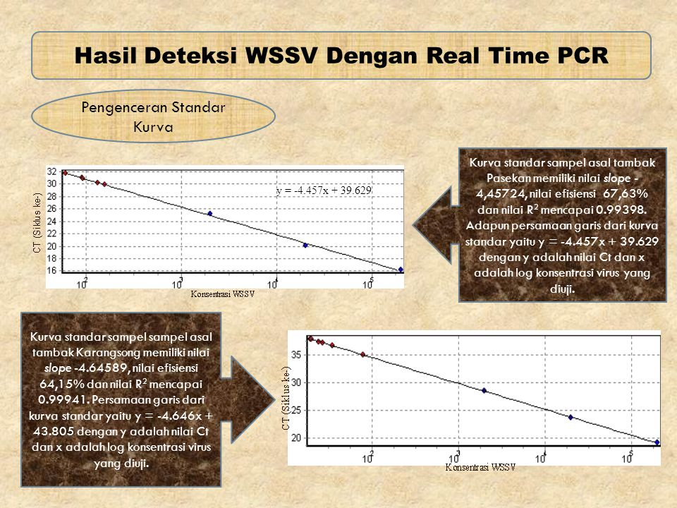 Hasil Deteksi WSSV Dengan Real Time PCR