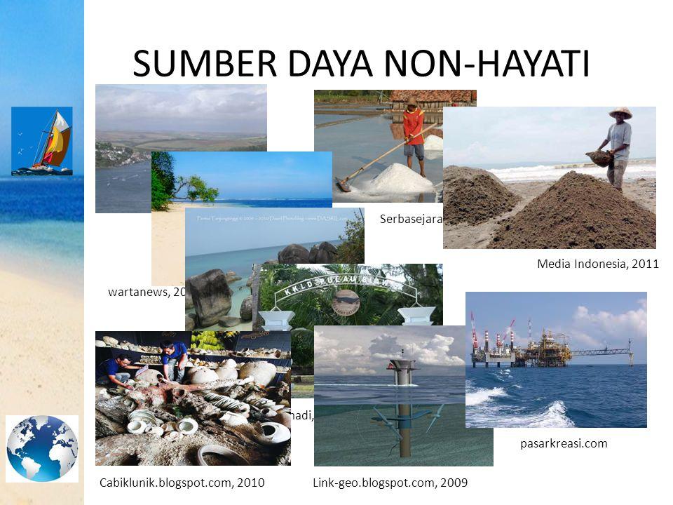 SUMBER DAYA NON-HAYATI