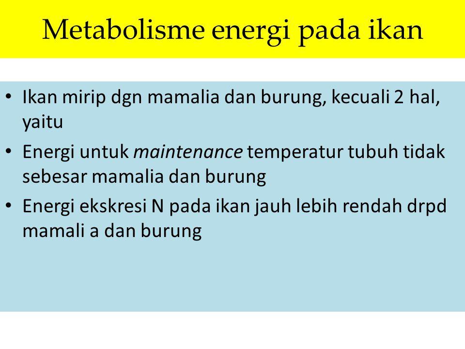 Metabolisme energi pada ikan