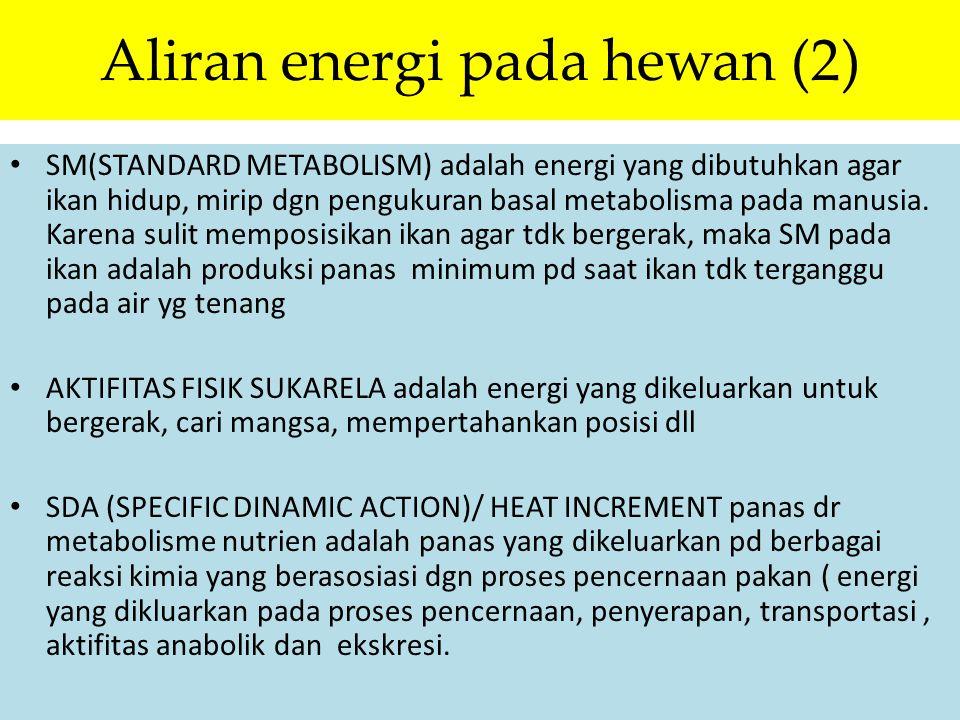 Aliran energi pada hewan (2)