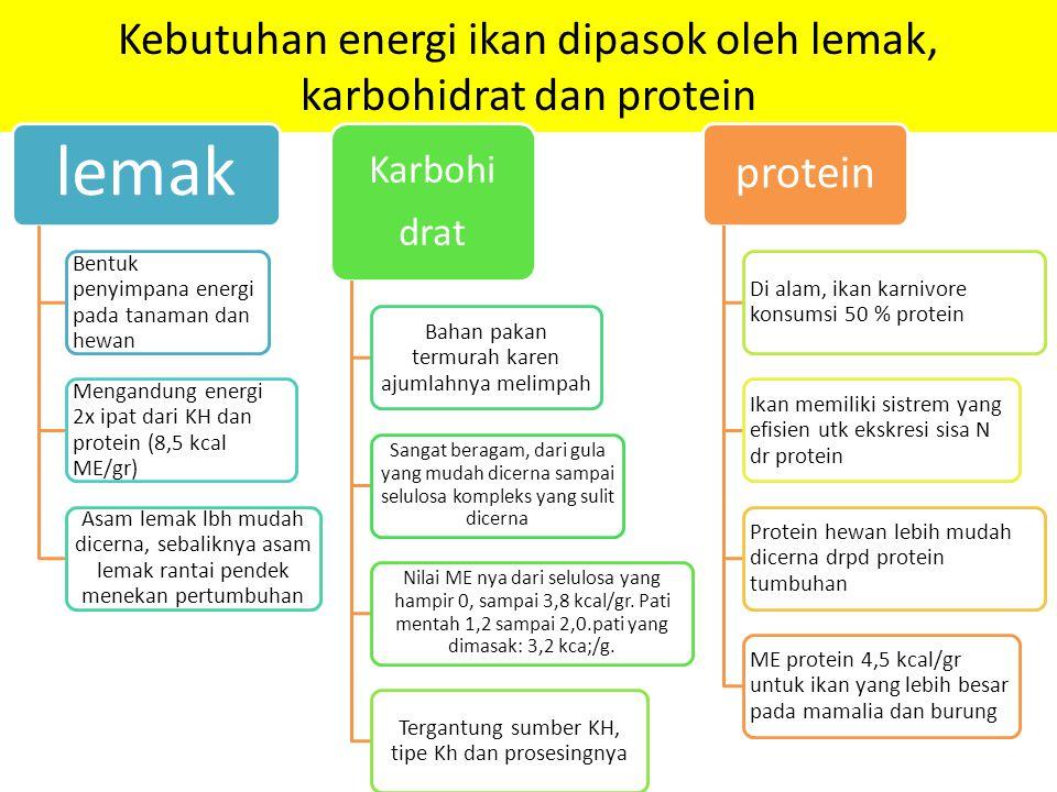 Kebutuhan energi ikan dipasok oleh lemak, karbohidrat dan protein