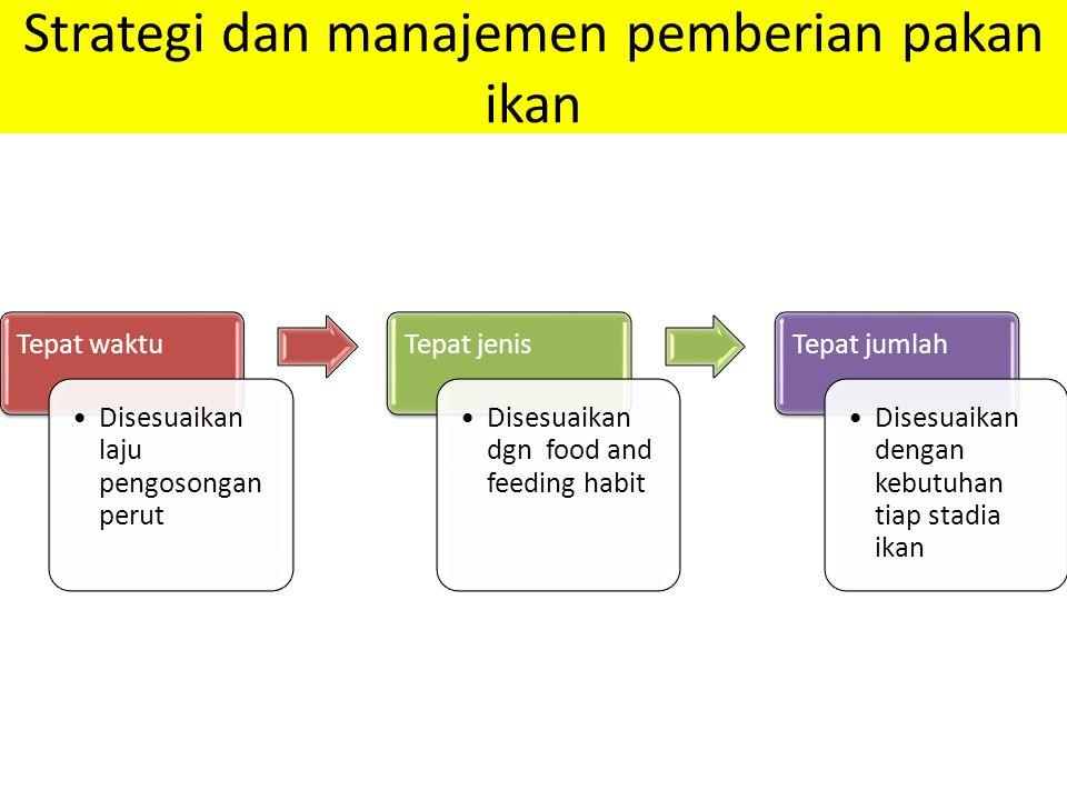 Strategi dan manajemen pemberian pakan ikan