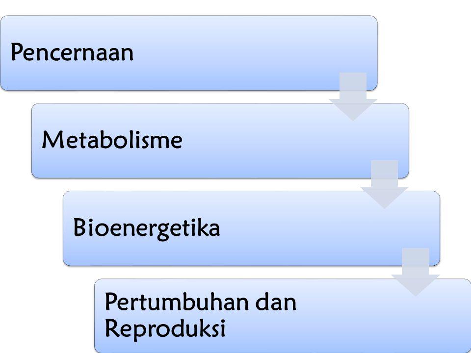 Pencernaan Metabolisme Bioenergetika Pertumbuhan dan Reproduksi