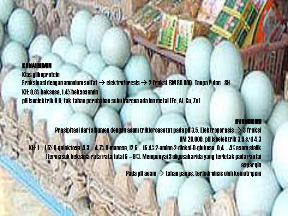 KONALBUMIN Klas glikoprotein. Fraksinasi dengan amonium sulfat  elektroforesis  2 fraksi. BM 80.000 Tanpa P dan –SH.