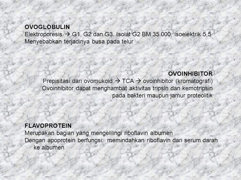 OVOGLOBULIN Elektroporesis  G1, G2 dan G3. Isolat G2 BM 35.000, isoelektrik 5,5. Menyebabkan terjadinya busa pada telur.