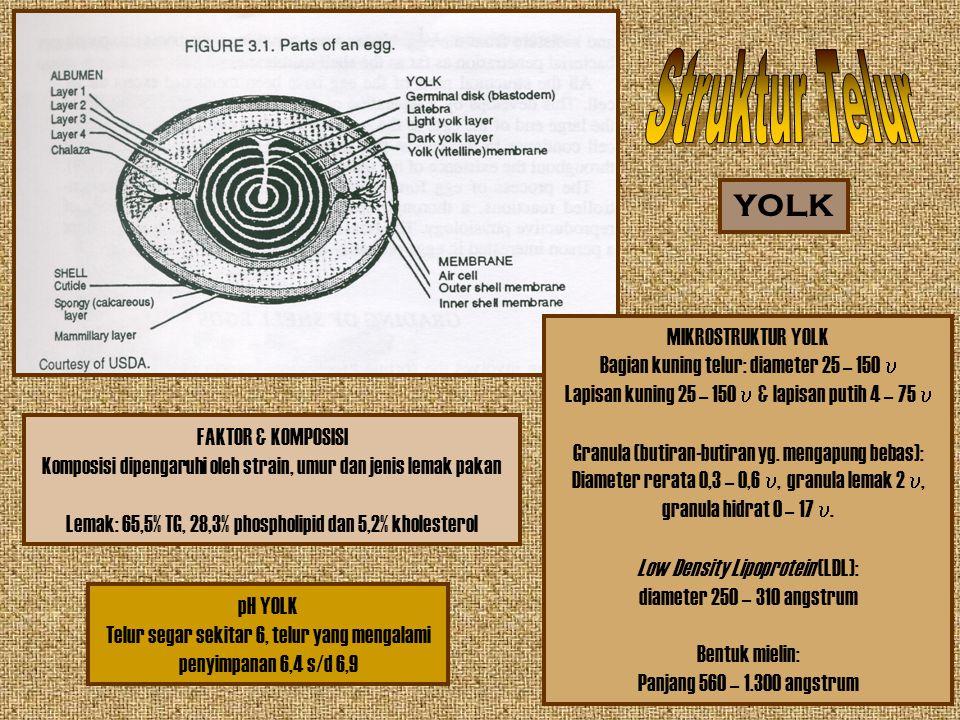 Struktur Telur YOLK MIKROSTRUKTUR YOLK