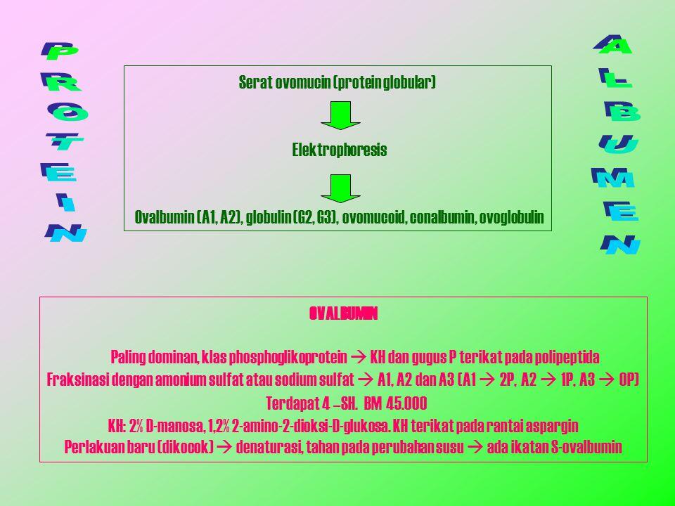 Serat ovomucin (protein globular)