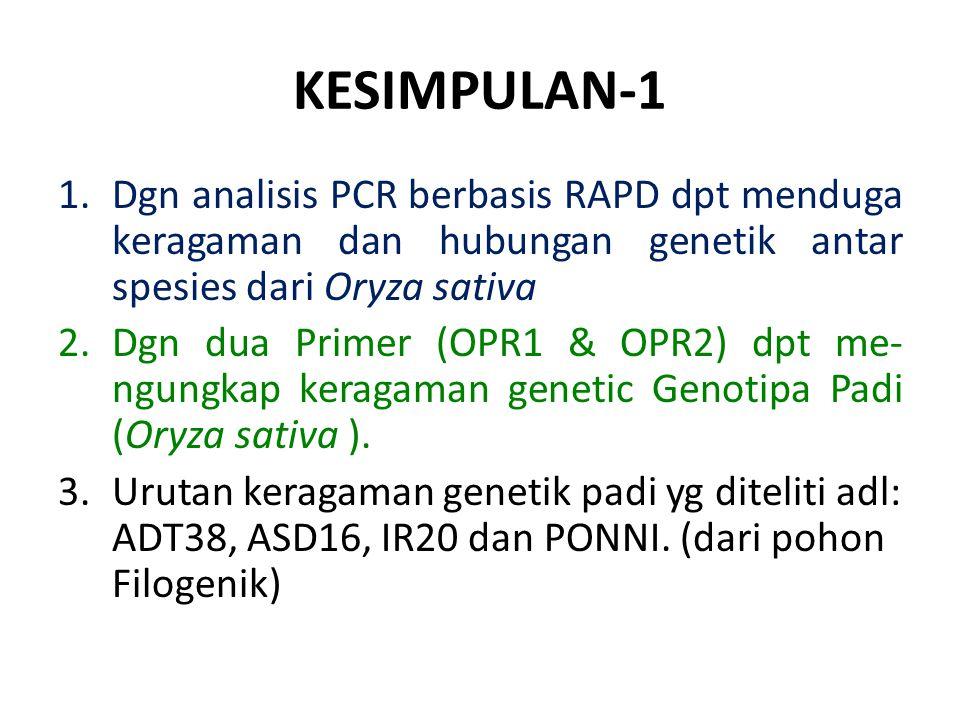 KESIMPULAN-1 Dgn analisis PCR berbasis RAPD dpt menduga keragaman dan hubungan genetik antar spesies dari Oryza sativa.