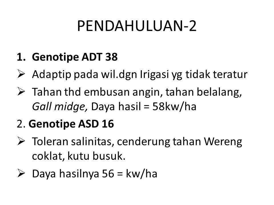 PENDAHULUAN-2 Genotipe ADT 38