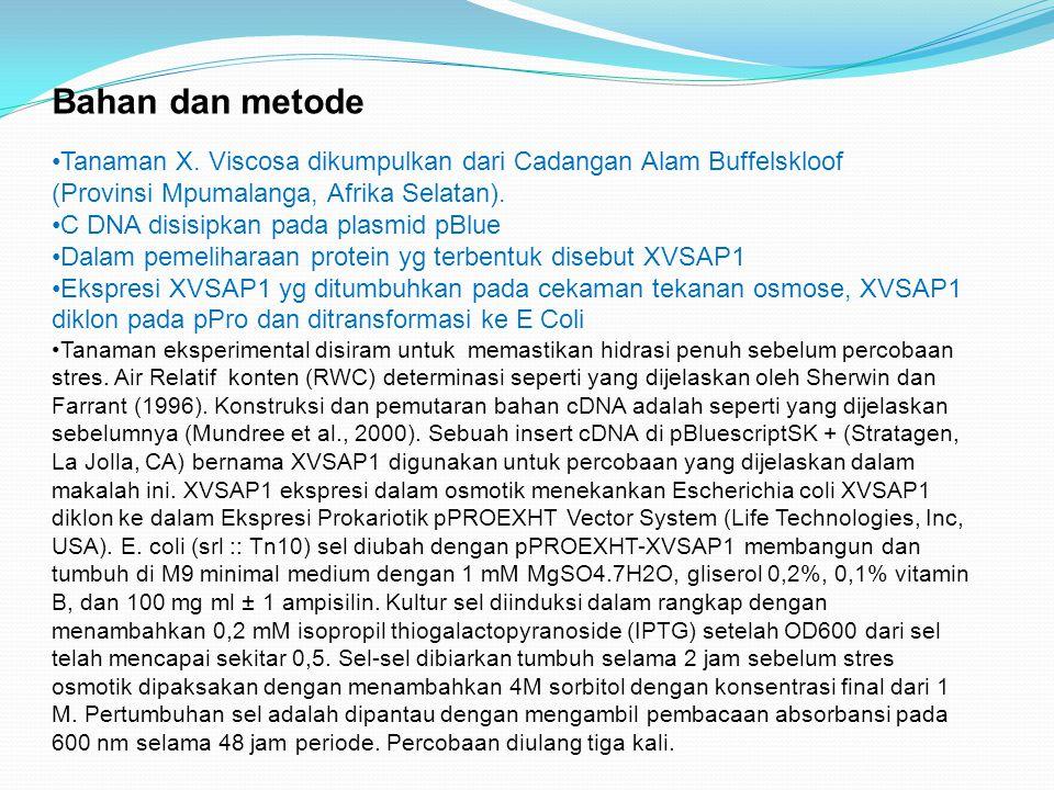 Bahan dan metode Tanaman X. Viscosa dikumpulkan dari Cadangan Alam Buffelskloof (Provinsi Mpumalanga, Afrika Selatan).