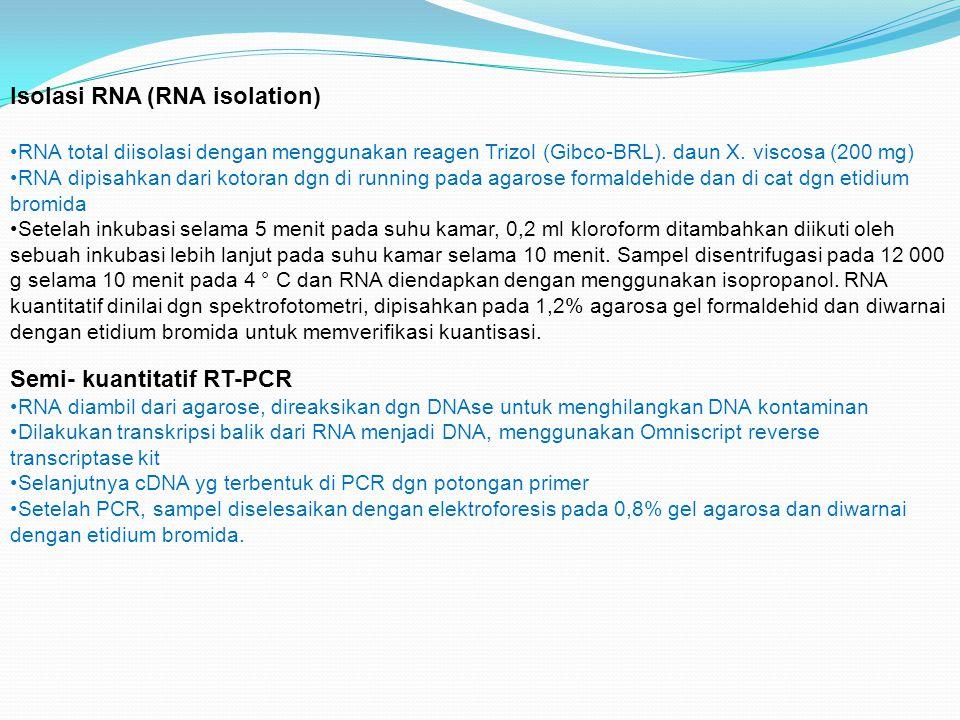 Isolasi RNA (RNA isolation)