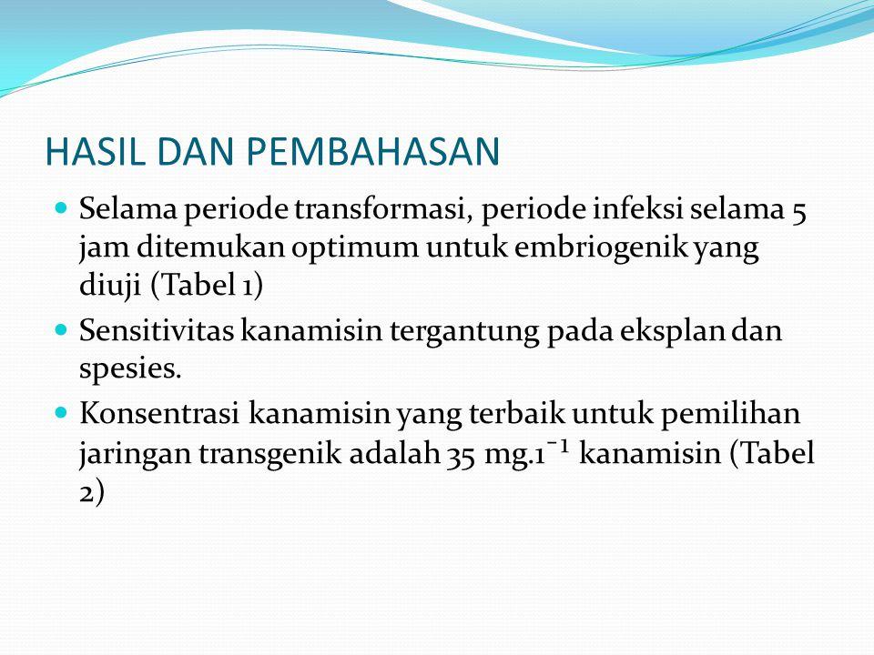 HASIL DAN PEMBAHASAN Selama periode transformasi, periode infeksi selama 5 jam ditemukan optimum untuk embriogenik yang diuji (Tabel 1)