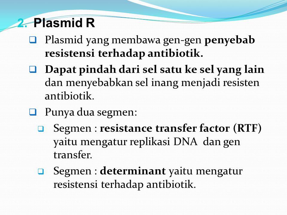 Plasmid R Plasmid yang membawa gen-gen penyebab resistensi terhadap antibiotik.