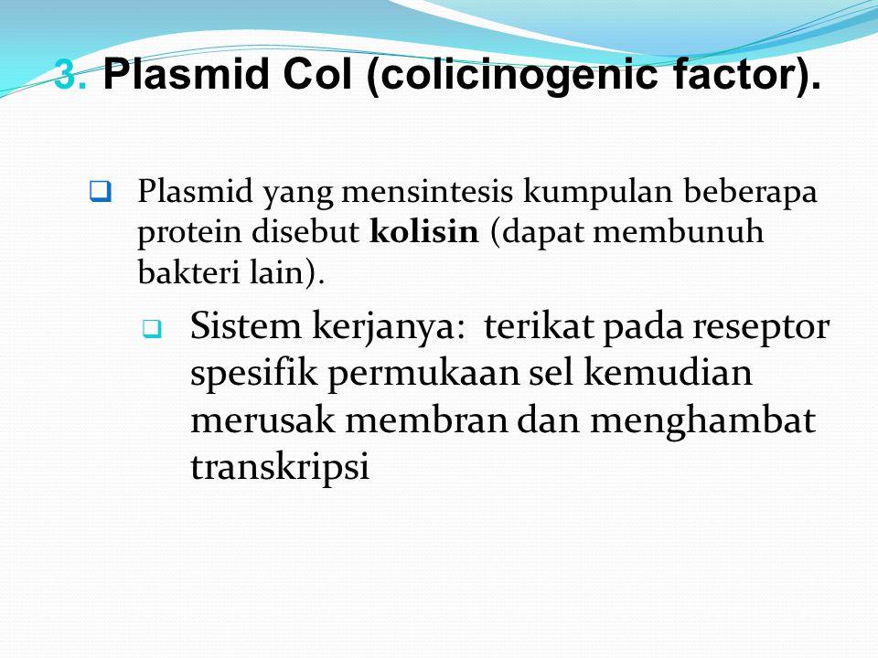 Plasmid Col (colicinogenic factor).