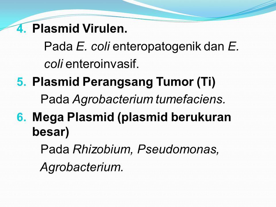 Plasmid Virulen. Pada E. coli enteropatogenik dan E. coli enteroinvasif. Plasmid Perangsang Tumor (Ti)