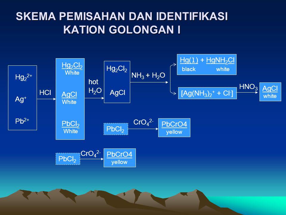 SKEMA PEMISAHAN DAN IDENTIFIKASI KATION GOLONGAN I