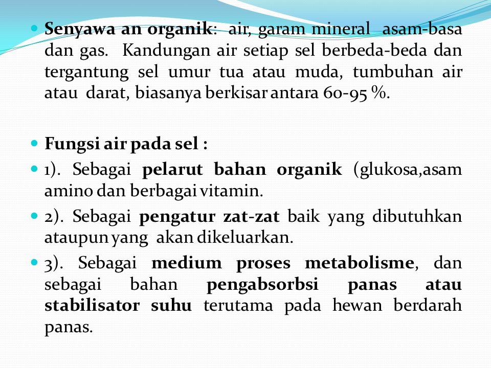 Senyawa an organik: air, garam mineral asam-basa dan gas