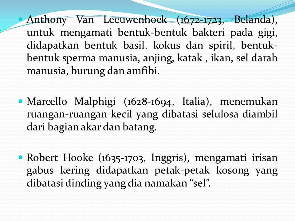 Anthony Van Leeuwenhoek (1672-1723, Belanda), untuk mengamati bentuk-bentuk bakteri pada gigi, didapatkan bentuk basil, kokus dan spiril, bentuk-bentuk sperma manusia, anjing, katak , ikan, sel darah manusia, burung dan amfibi.