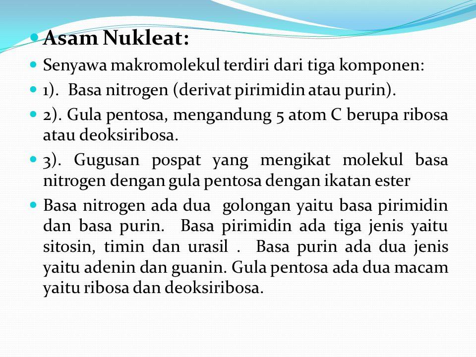 Asam Nukleat: Senyawa makromolekul terdiri dari tiga komponen: