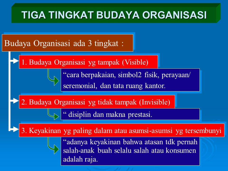 TIGA TINGKAT BUDAYA ORGANISASI