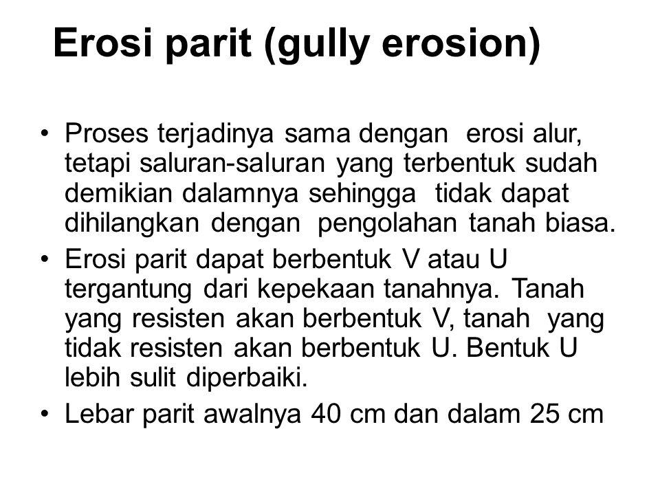 Erosi parit (gully erosion)