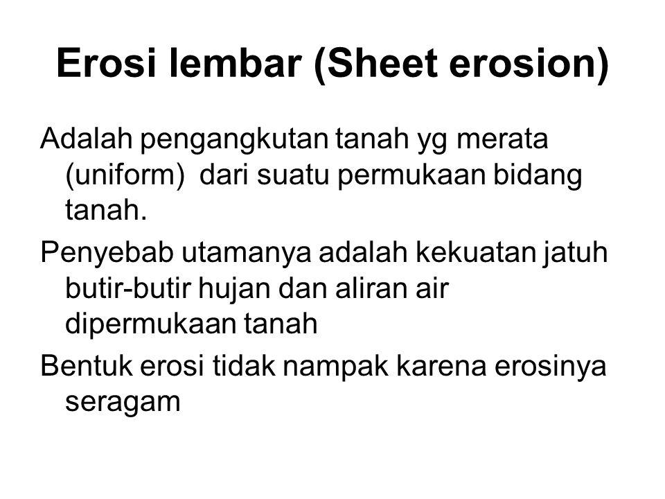 Erosi lembar (Sheet erosion)