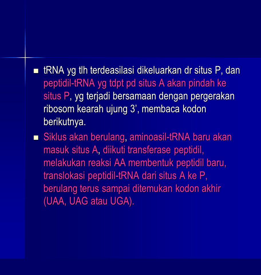 tRNA yg tlh terdeasilasi dikeluarkan dr situs P, dan peptidil-tRNA yg tdpt pd situs A akan pindah ke situs P, yg terjadi bersamaan dengan pergerakan ribosom kearah ujung 3', membaca kodon berikutnya.